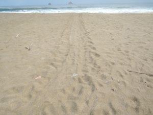 スカマデビーチ